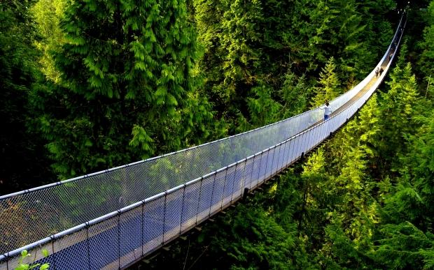 hanging-bridge-235451
